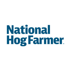 Remodel of hog barn breathes new life into sow operation
